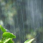 知って防災!豪雨による水災から身を守る